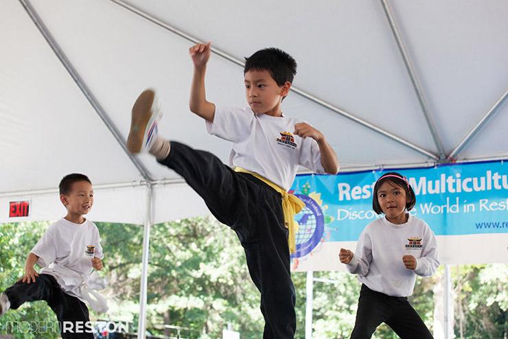 Reston-Multicultural-Festival-2014-011
