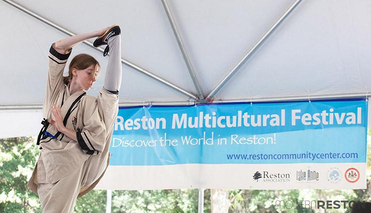 Reston-Multicultural-Festival-2014-033