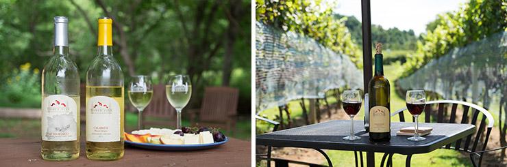 Three-Fox-Vineyards-wine