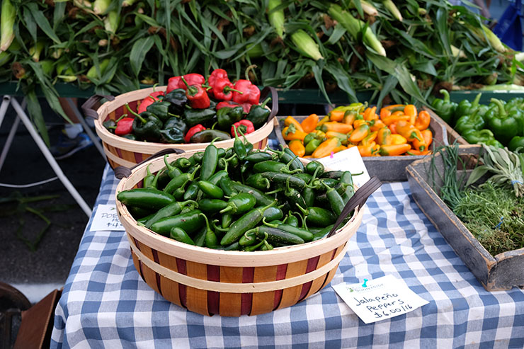 Farm at Sunnyside - Chili Peppers