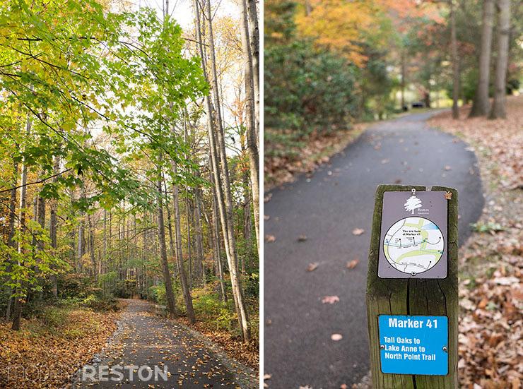 Lake-Newport-Reston-Virginia-trail-04