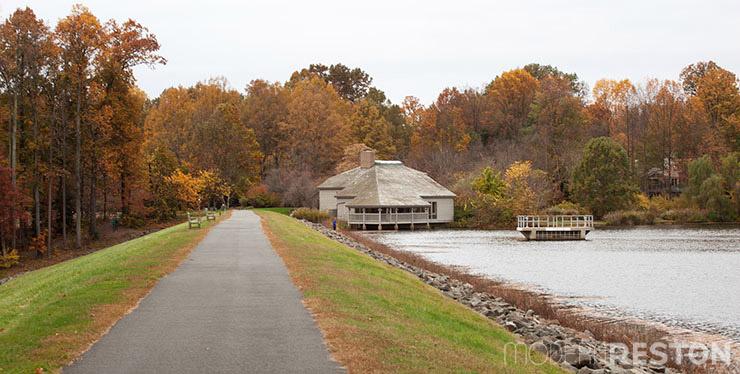 Lake-Newport-Reston-Virginia-trail-08
