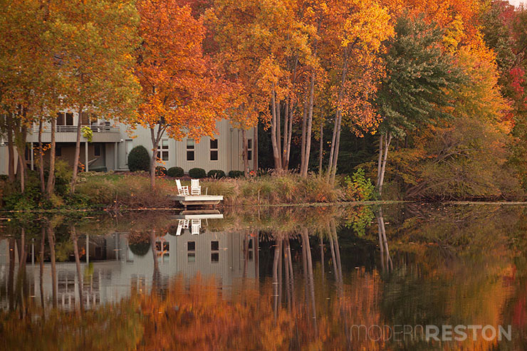 Lake-Newport-Reston-Virginia-trail-10