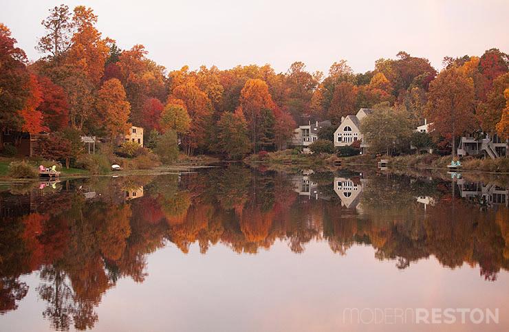 Lake-Newport-Reston-Virginia-trail-12