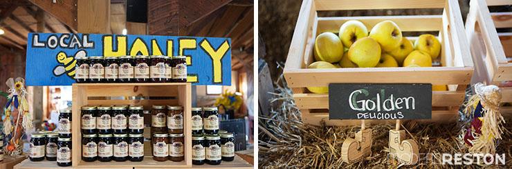 Reston-Farm-Market-03