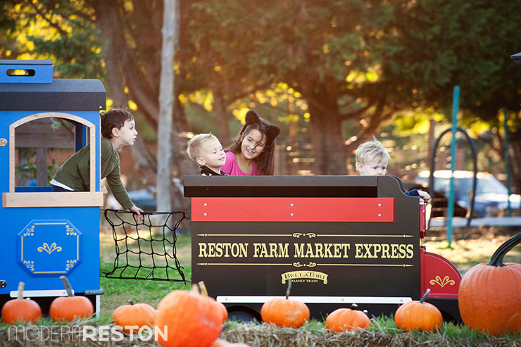 Reston-Farm-Market-train-ride