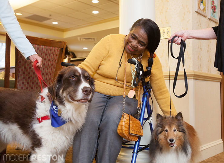 Fairfax Pets on Wheels at Sunrise Senior Living in Reston