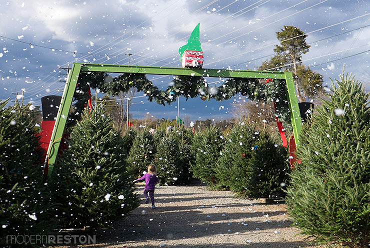 Cox Farms Christmas Winter Wonderland in Centreville, Virginia