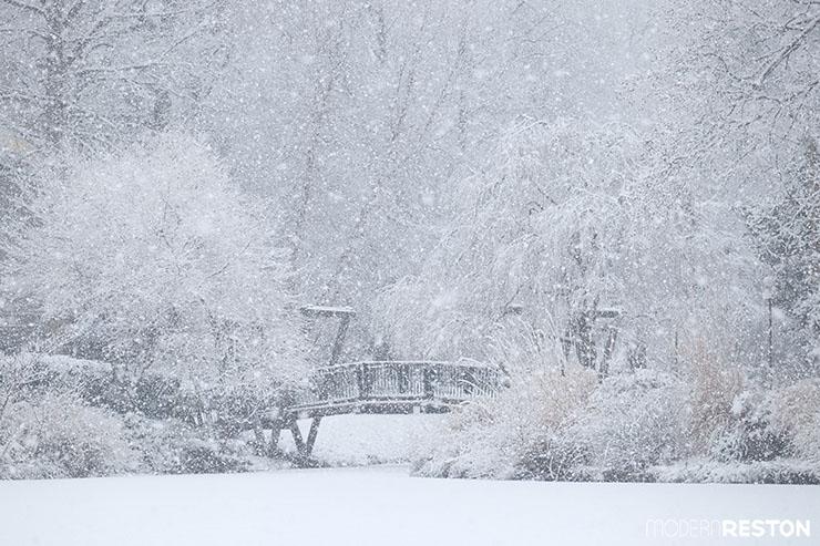 13-Lake-Anne-Reston-Van-Gogh-Bridge-snow