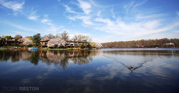 Lake-Thoreau-Reston-spring