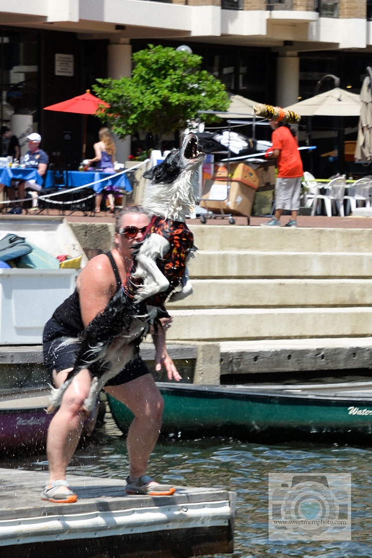 Lake-Anne-dock-diving-dogs-06