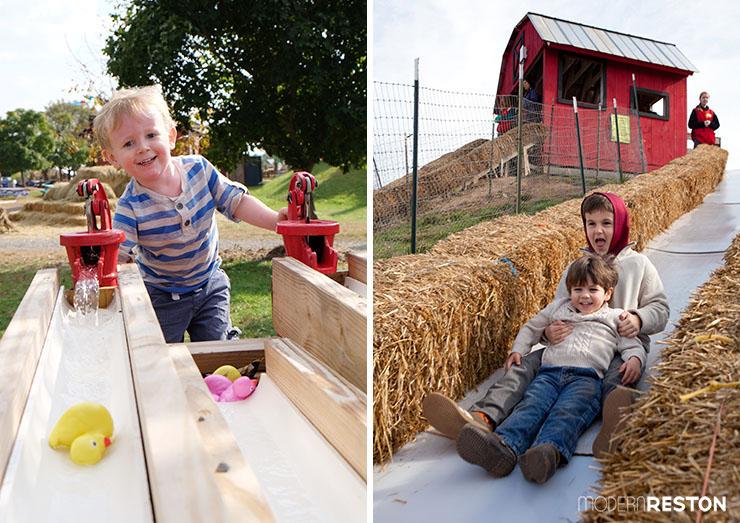 Cox-Farms-Fall-Festival-2