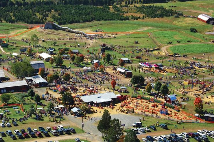 Cox-Farms-Fall-Festival-aerial