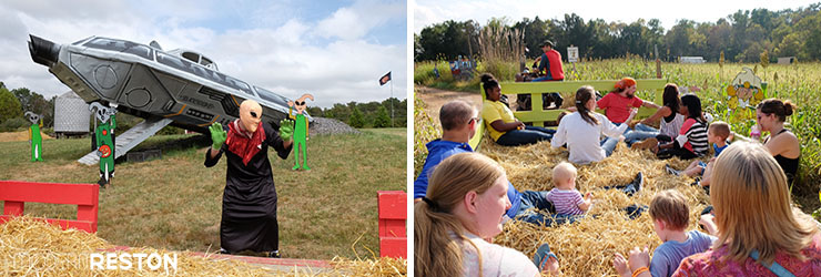 Cox-Farms-Fall-Festival-hay-ride