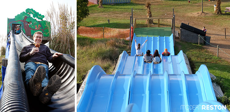 Cox-Farms-Fall-Festival-slides