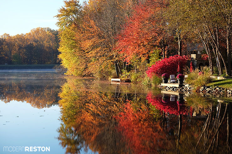 Reston Virginia fall foliage Lake Newport