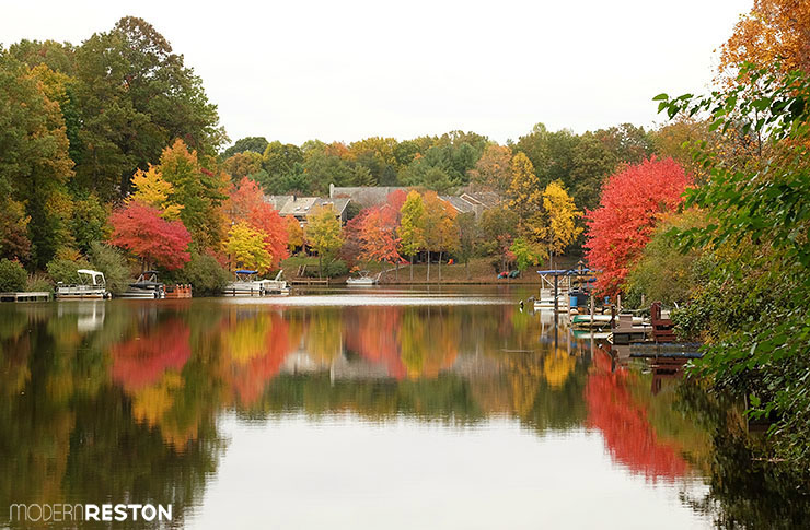 Reston Virginia fall foliage Lake Audubon