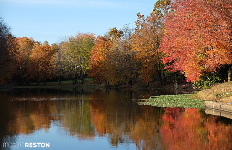 Reston Virginia fall foliage Lake Fairfax