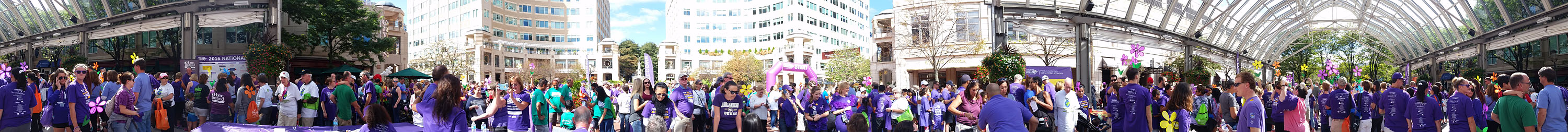 walk-to-end-alzheimers-reston-town-center-02