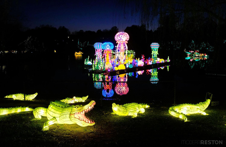 chinese-lantern-festival-roers-zoofari-reston-04