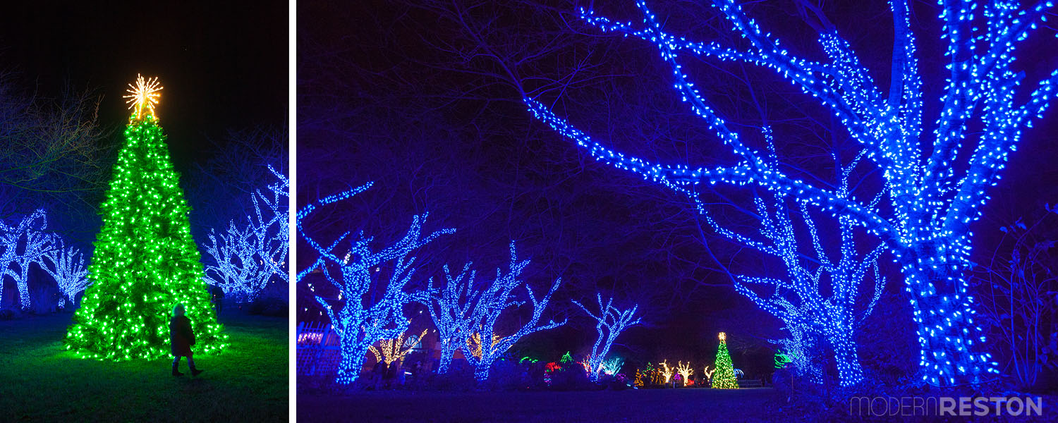 meadowlark-gardens-winter-walk-of-lights