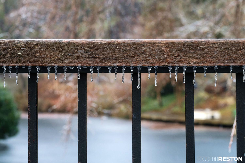 lake-anne-ice-storm-11