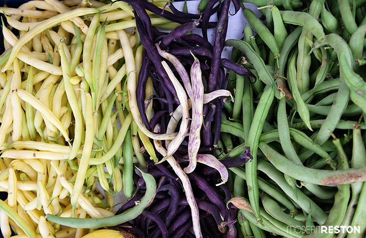 Reston-Farmers-Market-beans