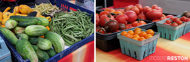 Reston-Farmers-Market-vegetables