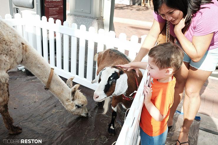 Reston-Town-Center-Zoosday-03