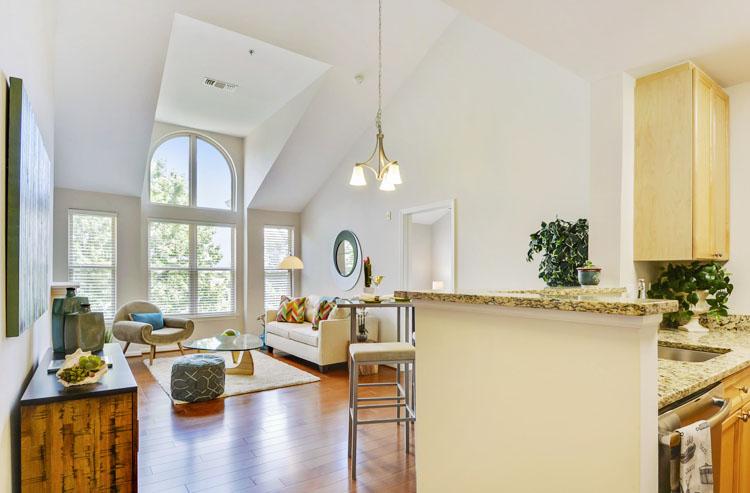 Reston-condo-staging-living-room