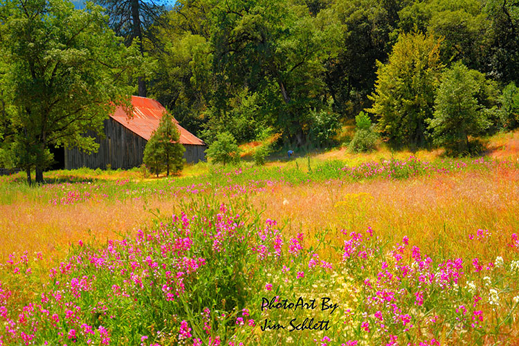 Tower-Barn-Field-Whiskeytown