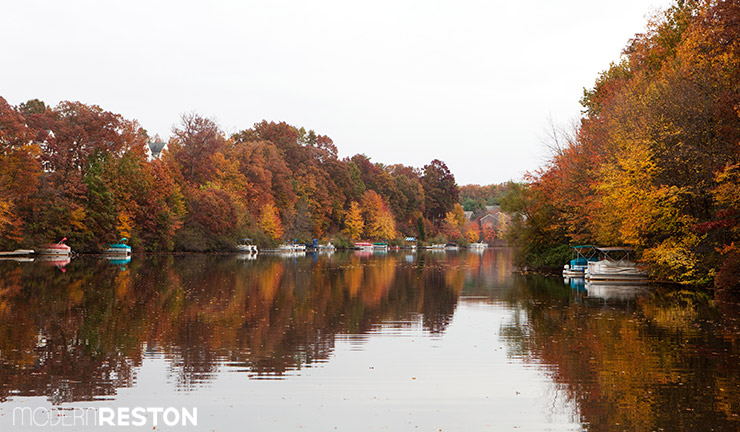 Lake-Audubon-Reston-fall-03